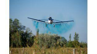 Discusión. Para las ONG hay que prohibir las fumigaciones aéreas. La otra postura indica que son necesarias en épocas de lluvia.