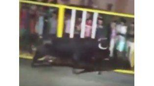 Un hombre murió corneado por un toro al intentar sacarse una selfie
