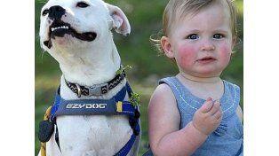 Una  niña sin brazo y la perra sin pata emocionan en Facebook