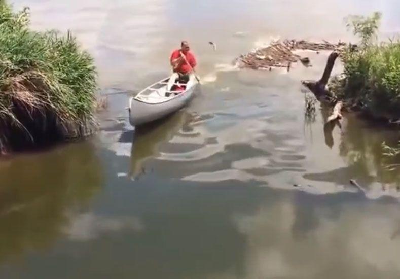 Mirá lo que le pasa cuando pasea con su bote