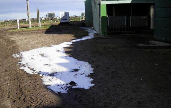 Crisis. Los tamberos derramaron la leche en acequias y alcantarillas.