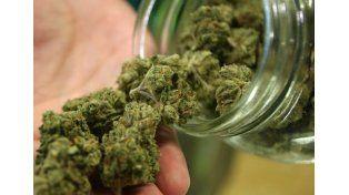 La marihuana puede ayudar a curar los huesos tras una fractura y los hace más resistentes