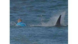 Tiburón a la vista: salvó su vida de milagro