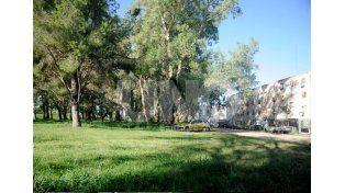 La sede. El sueño de los vecinos que impulsan la idea es hacerla en el predio conocido como eucaliptal. UNO de Santa Fe/José Busiemi