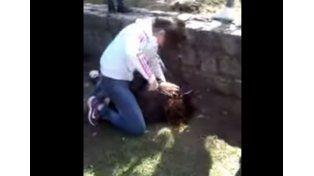 Brutal pelea entre chicas en el Jardín Botánico de Santa Fe