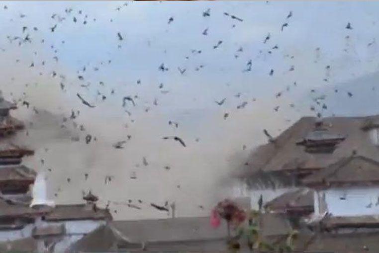 Un turista grabó el momento exacto en el que comienza el terremoto en Nepal