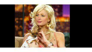 Murió la mejor compañera de Paris Hilton