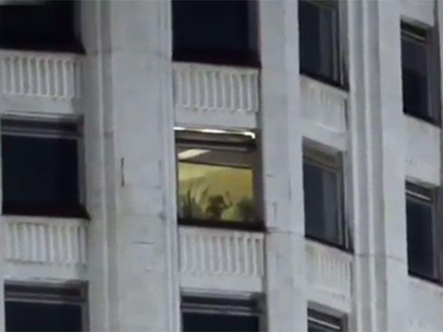 Filmaba el parlamento ruso y encontró la ventanita del amor