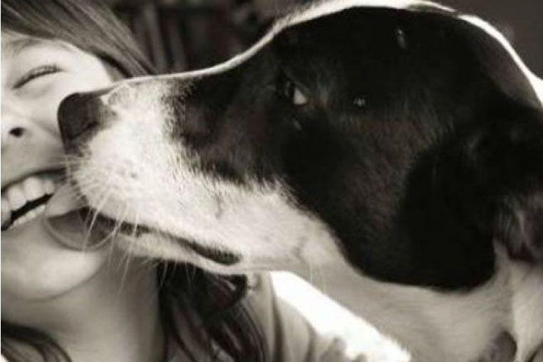 ¿Los besos de los perros son buenos para la salud?