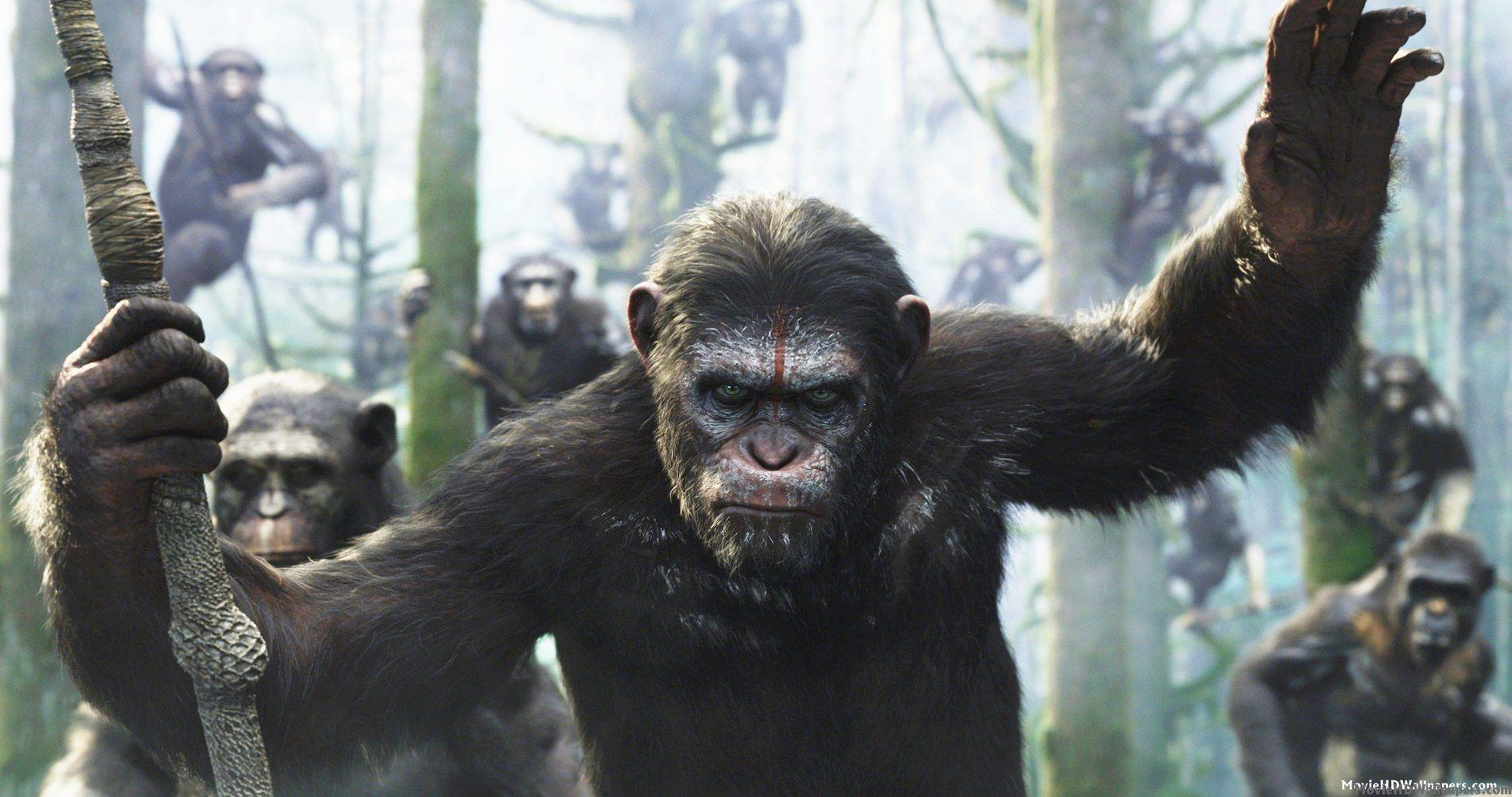 El Planeta de los Simios: Confrontación.