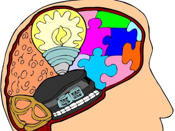 ¿Cuál es tu estilo de aprendizaje desde un punto de vista sensorial?