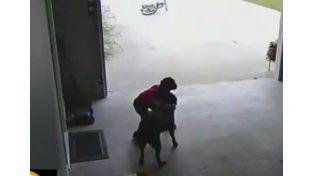 Un niño ingresa todos los días a abrazar un perro en una casa de su barrio
