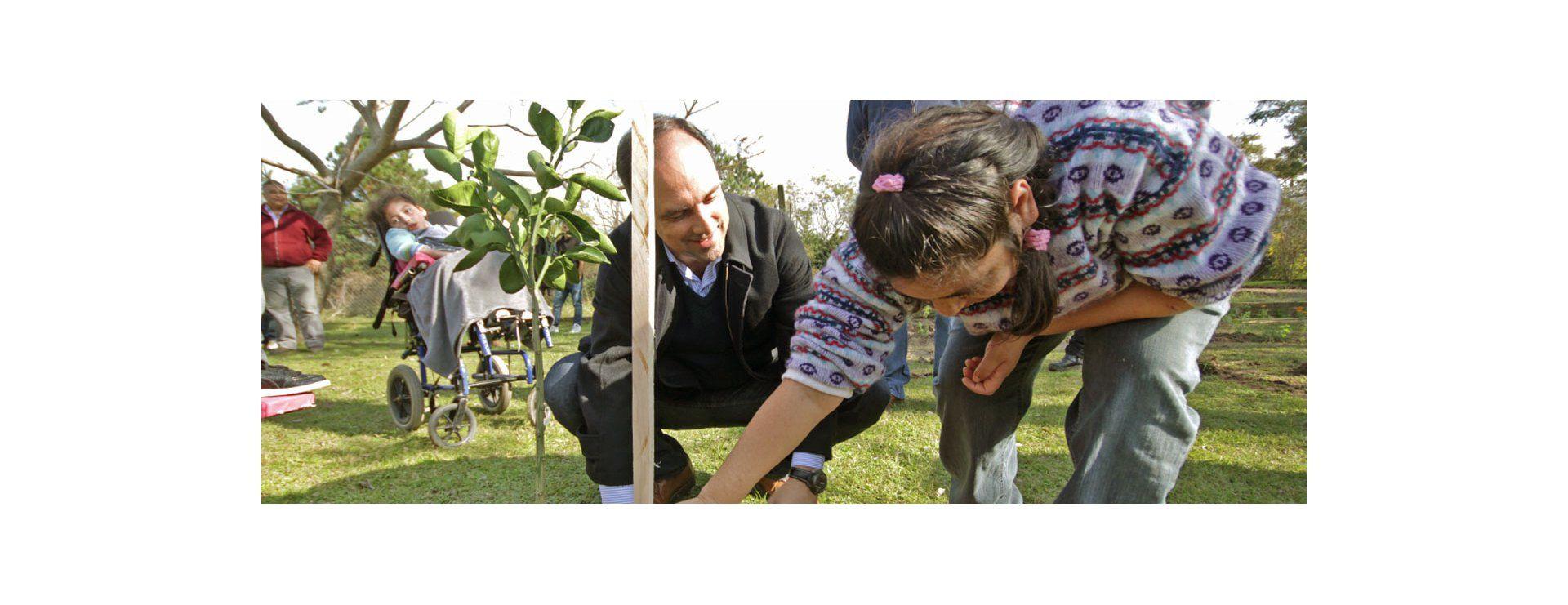 Programa de Reconstrucción: Árboles frutales perfuman el patio de Un Mundo Especial