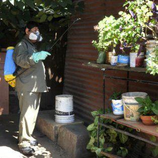 Ahora también es el momento. Evitar el ciclo de reproducción del Aedes es una tarea para todo el año, tanto en los hogares como en la vía pública.