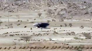 No se sabe si es real, pero seguro es viral: video de ET y OVNI en Arabia Saudita