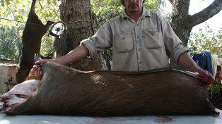 Violaciones. Desde la asociación civil consideran que se infringe la ley de conservación de la fauna silvestre en el territorio santafesino y piden que se actúe al respecto.