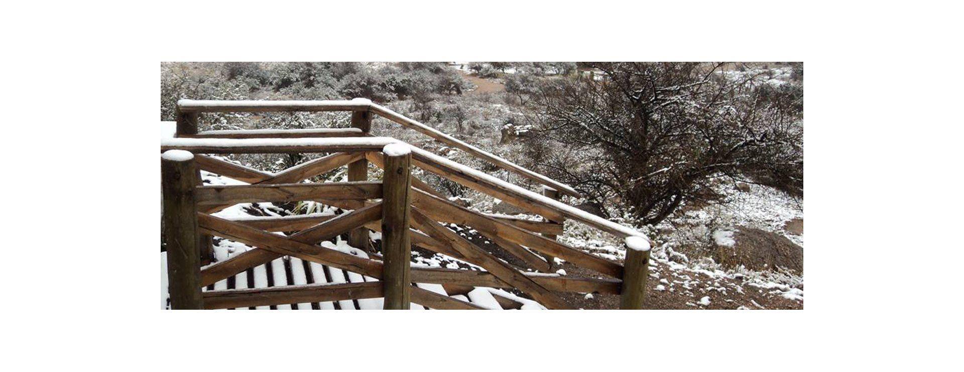 En las escaleras y las ramas de los arbustos también sobresale la primer nieve de este invierno.