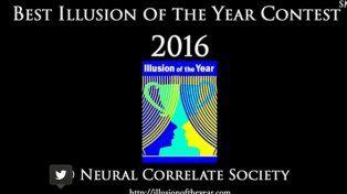Esta es la mejor ilusión óptica del año