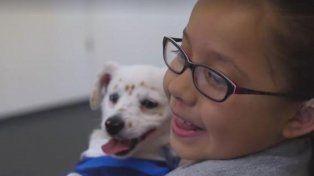 Julia y Walter, la niña y el cachorro sordos que se comunican por lenguaje de señas