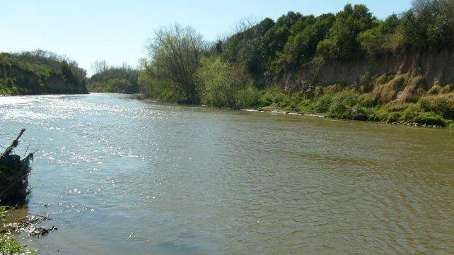 ¿A qué se debe la mortandad de los peces en nuestros ríos?