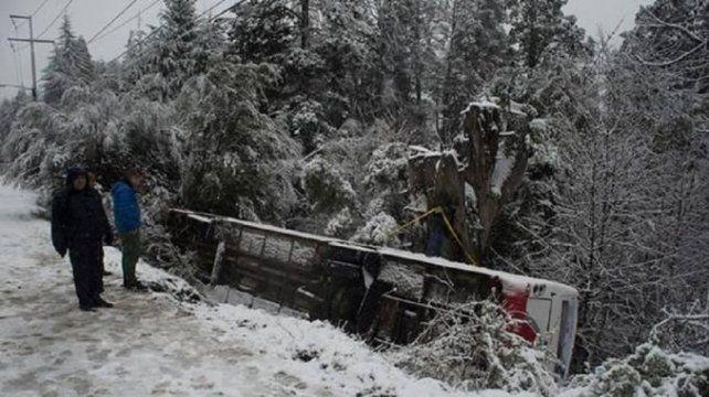 Milagro: un colectivo con niños cayó por un barranco y los salvó un árbol
