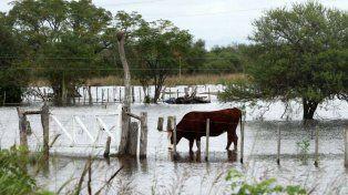 Provincia golpeada. La emergencia abarcó a 18 de los 19 departamentos santafesinos.