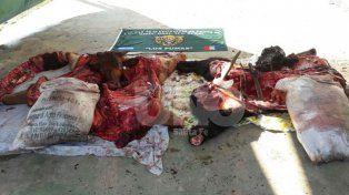 Secuestraron media tonelada de carne vacuna robada y faenada clandestinamente