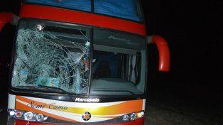 Murieron una mujer y su hijo atropellados por un micro en Monigotes