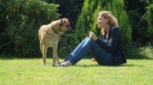 Adoptó a un perro que la esperó meses en la puerta del hotel donde se alojaba