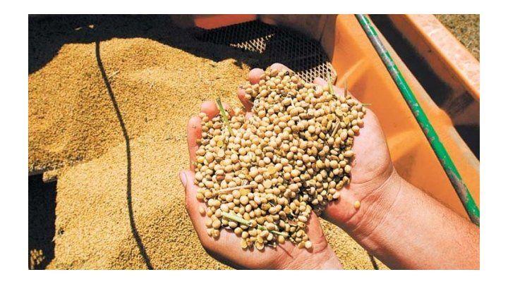 Harina de soja. Fue el producto de exportación que encabezó las ventas del primer cuatrimestre.