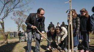 Programa de reconstrucción: ADE se transformó en padrino del Plan de Forestación de la Ciudad