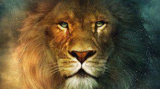 Este test visual te dice cuál es tu animal espiritual