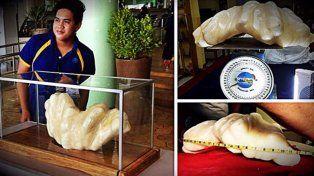 Un pescador encontró una perla de 34 kilos, la más grande del mundo