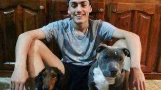 Así vive Drako, el pitbull arrepentido por romper la zapatilla de su dueño que se hizo viral