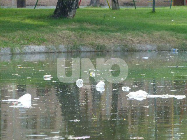 En los piletones. La falta de limpieza en los lagos es notoria