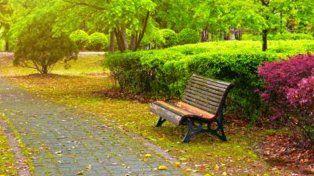 Barrios más verdes para combatir la delincuencia