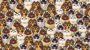 ¿Podés encontrar al panda?