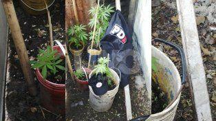 Rincón: cayó una vendedora barrial de drogas y le incautaron estupefacientes