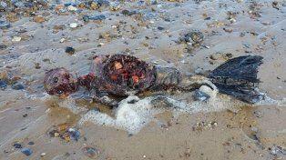 La historia detrás del hombre que encontró una sirena muerta en la playa