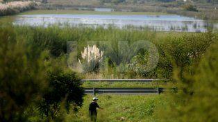 Realizarán una limpieza masiva en la Reserva Natural Urbana del Oeste