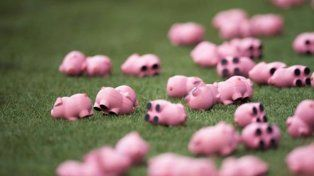 Hinchas ingleses protestaron tirando cerditos de plástico al campo de juego