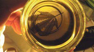 Los puntos principales de la ley de cannabis medicinal de Santa Fe