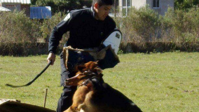 La Sección Perros de la policía santafesina celebró sus 47 años