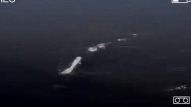 ¿Encontraron un monstruo como el del lago Ness?