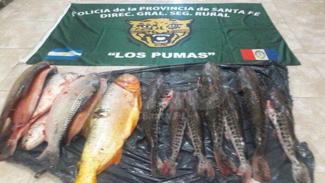 Secuestraron cientos de especies ictícolas depredadas en ríos y lagunas