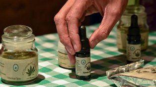 Está a disposición el protocolo para el uso médico del cannabis