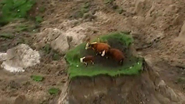 Se salvaron del terremoto al quedar en el único lugar que no se derrumbó