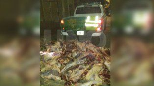 Secuestraron más de 5.000 kilos de carne vacuna no apta para consumo humano