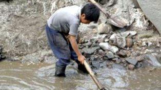 Detectaron trabajo infantil y precario en un campo de arándanos de Santa Fe