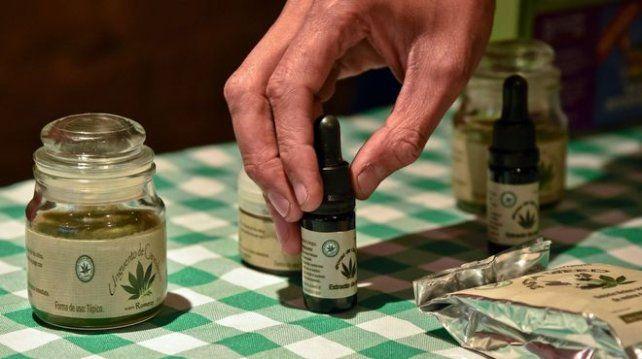 Amplio apoyo de Diputados al proyecto de cannabis medicinal